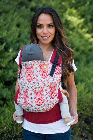 SSC or Soft Structured Carrier looks like a backpack with shoulder straps and waist belt